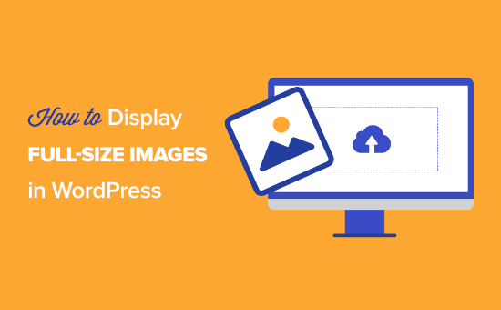 How to Display Full Size Images in WordPress (4 Methods)