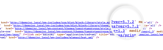 WordPress version shown with CSS and JS files