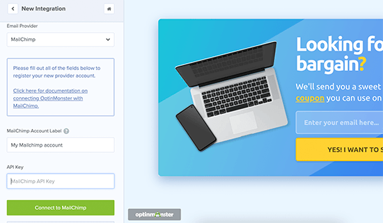 Add your Mailchimp API key